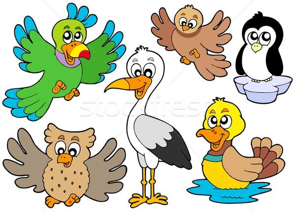 Stock photo: Cute birds collection 2