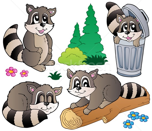 Cartoon racoons collection Stock photo © clairev