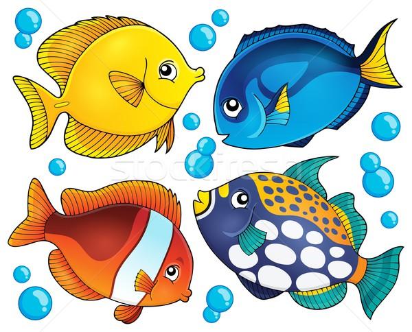 Korallzátony hal gyűjtemény természet óceán állatok Stock fotó © clairev