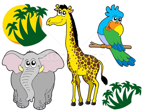 African animals collection 3 Stock photo © clairev