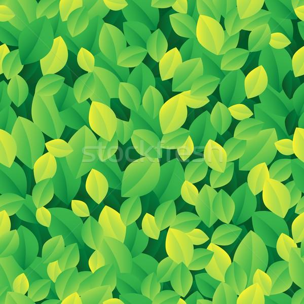 Yaprak sanat yaprakları model grafik Stok fotoğraf © clairev