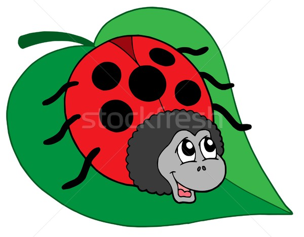 Cute ladybug on leaf vector illustration Stock photo © clairev