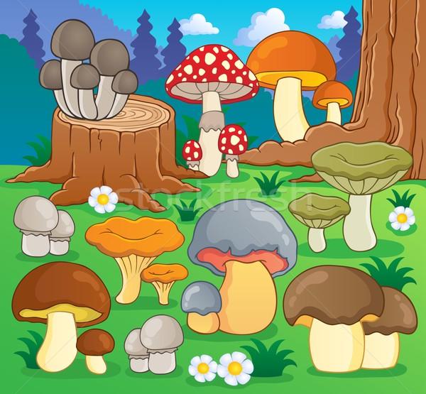 Mushroom theme image 4 Stock photo © clairev