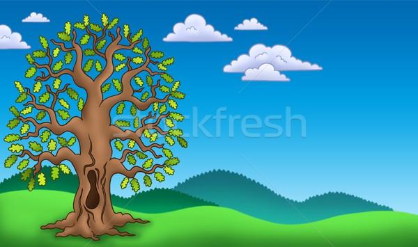 Landscape with oak tree Stock photo © clairev