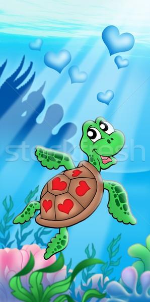 Tenger teknős szívek szín illusztráció víz Stock fotó © clairev