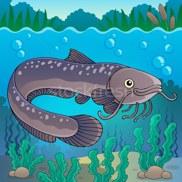 Freshwater fish topic image 2 Stock photo © clairev