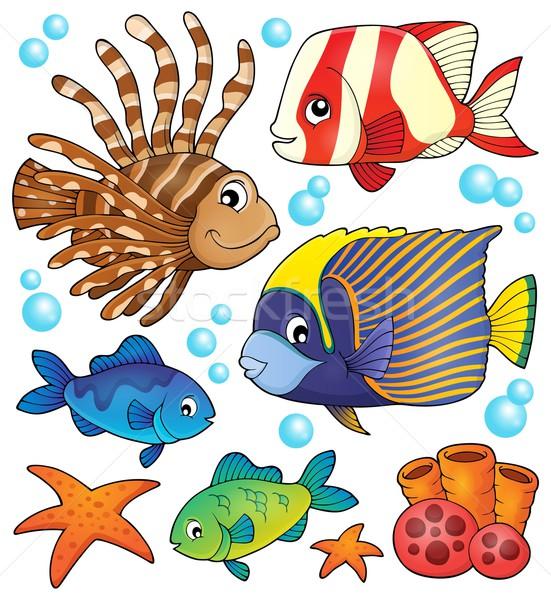 Korallzátony hal gyűjtemény óceán állatok buborékok Stock fotó © clairev