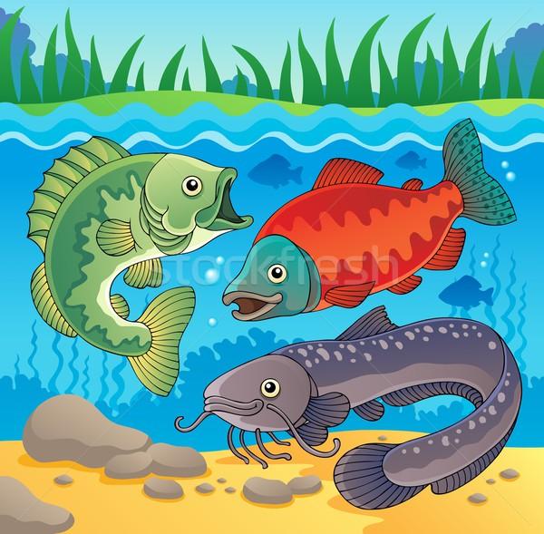 пресноводный рыбы изображение природы дизайна рок Сток-фото © clairev