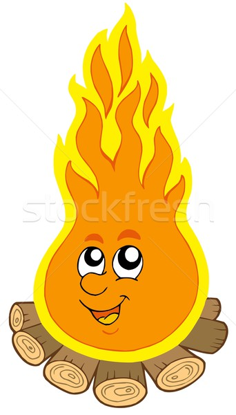 Cartoon campamento fuego madera diseno color Foto stock © clairev