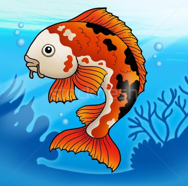 Rood koi vis water kleur illustratie Stockfoto © clairev
