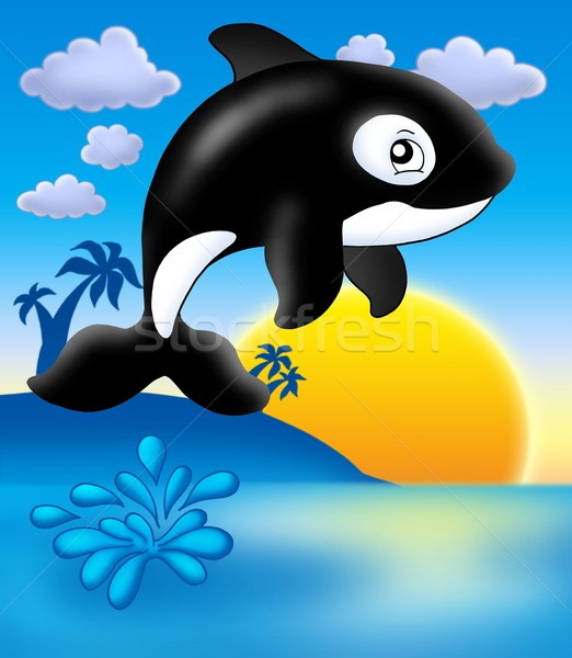 Killer whale with sunset Stock photo © clairev