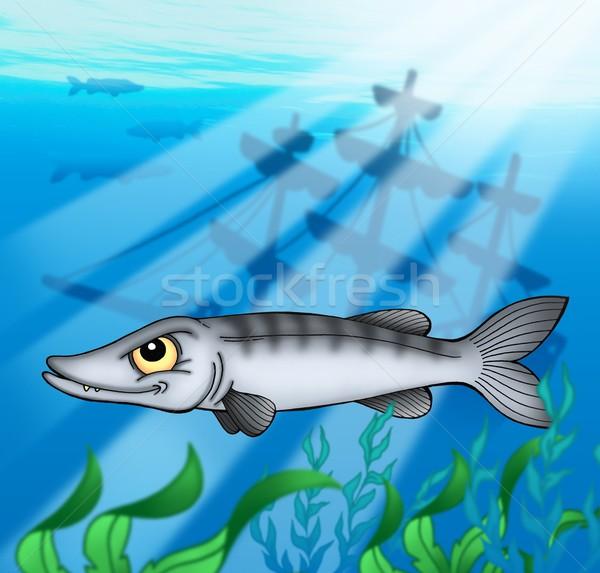 Schipbreuk kleur illustratie vis zee Blauw Stockfoto © clairev