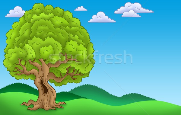 Landscape with big leafy tree Stock photo © clairev