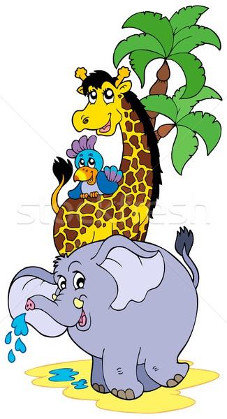 Cartoon African animals Stock photo © clairev