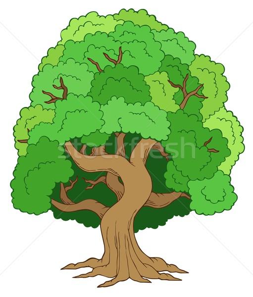 Green leafy tree Stock photo © clairev