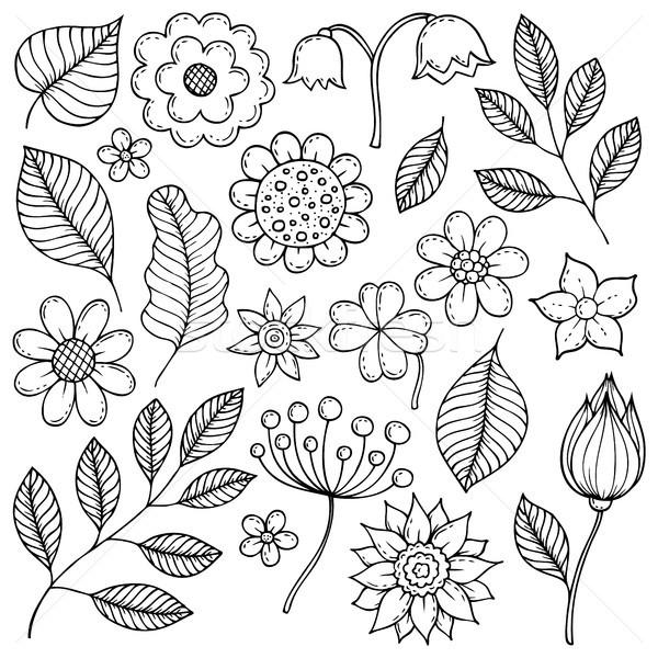 Disegni Fiori.Disegni Fiori Foglie Primavera Natura Arte