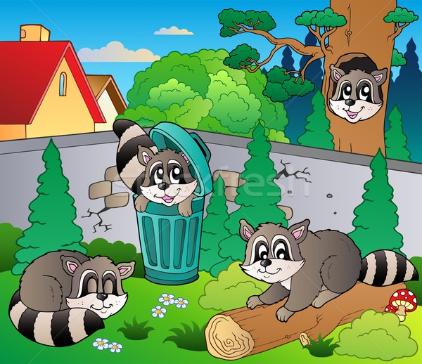 Backyard with cute racoons Stock photo © clairev