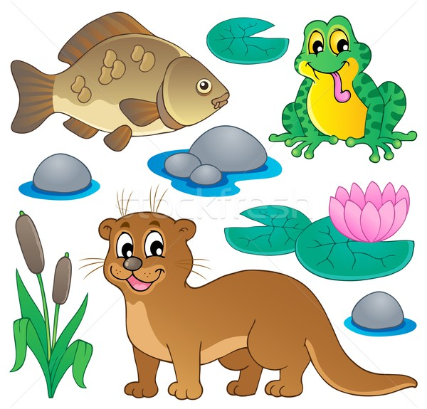 River fauna collection 1 Stock photo © clairev