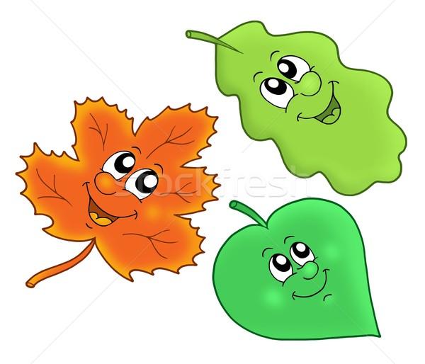 Stok fotoğraf: Sevimli · sonbahar · yaprakları · renk · örnek · ağaç · orman