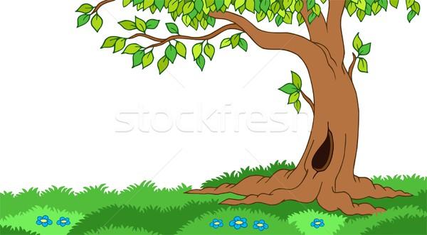 Ağaç çimenli manzara çiçek doğa yaprak Stok fotoğraf © clairev