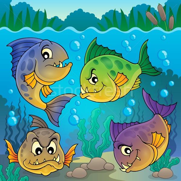 четыре пиранья подводного природы рок Сток-фото © clairev