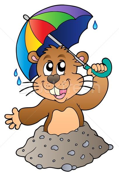 Cartoon groundhog with umbrella Stock photo © clairev