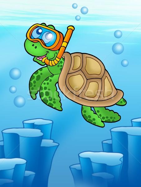 морем черепахи трубка Diver подводного цвета Сток-фото © clairev