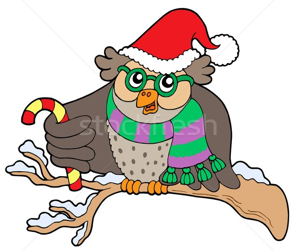 Owl in Christmas outfit Stock photo © clairev