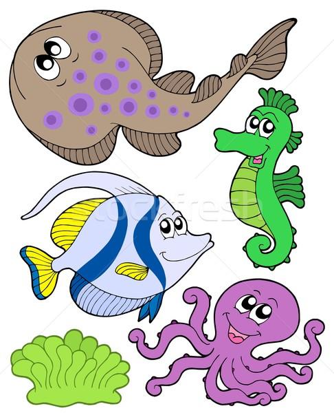 Aranyos tengeri állatok gyűjtemény víz tenger Stock fotó © clairev