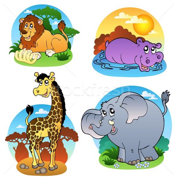 Various tropical animals 1 Stock photo © clairev