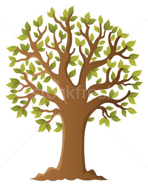 дерево тема изображение лет листьев завода Сток-фото © clairev