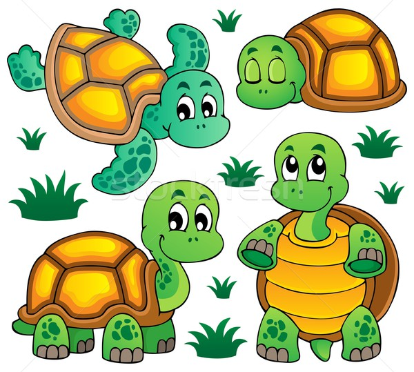 Image with turtle theme 1 Stock photo © clairev