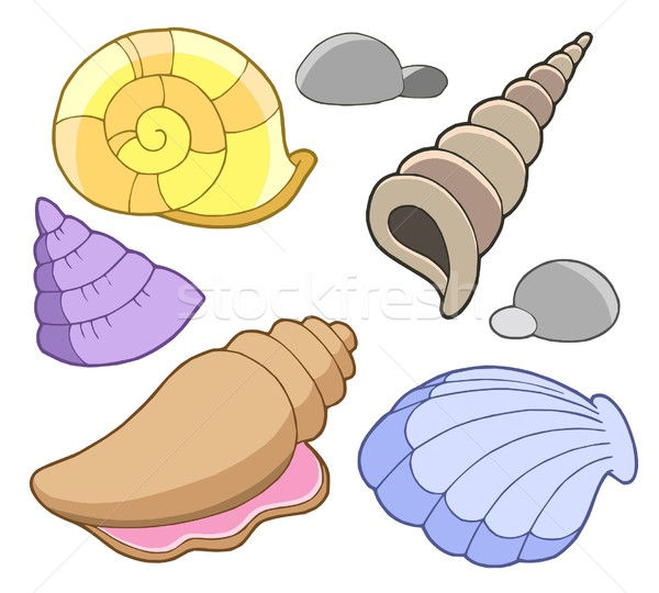 Sea shells collection Stock photo © clairev