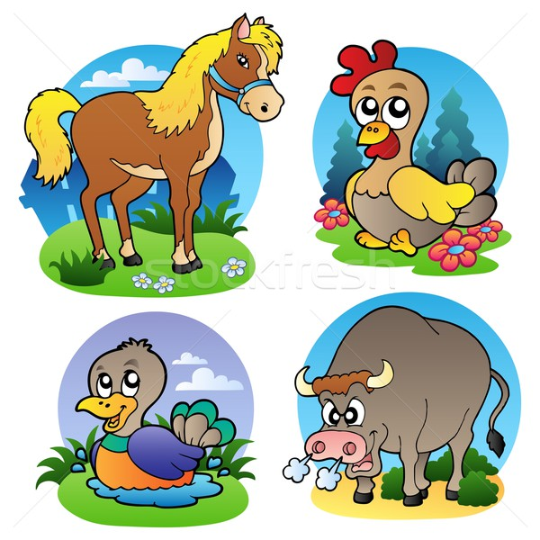 Various farm animals 2 Stock photo © clairev
