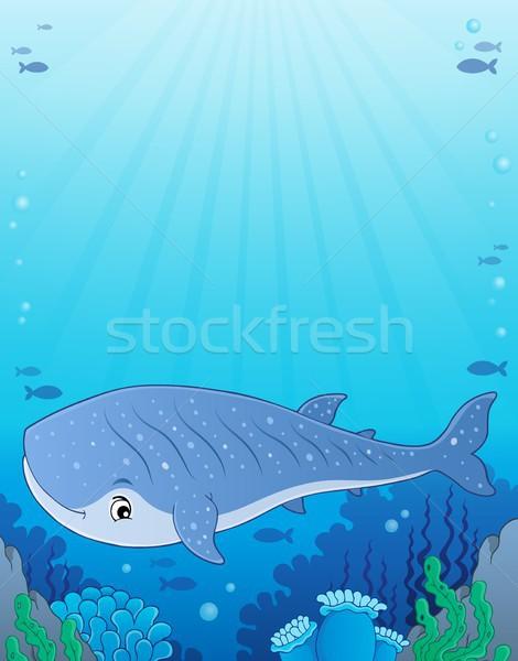 Baleia tubarão imagem peixe natureza luz Foto stock © clairev