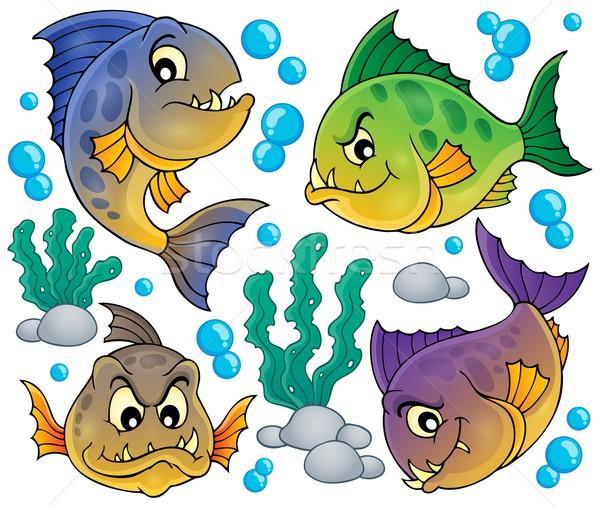 Piranha coleção peixe arte animais Foto stock © clairev
