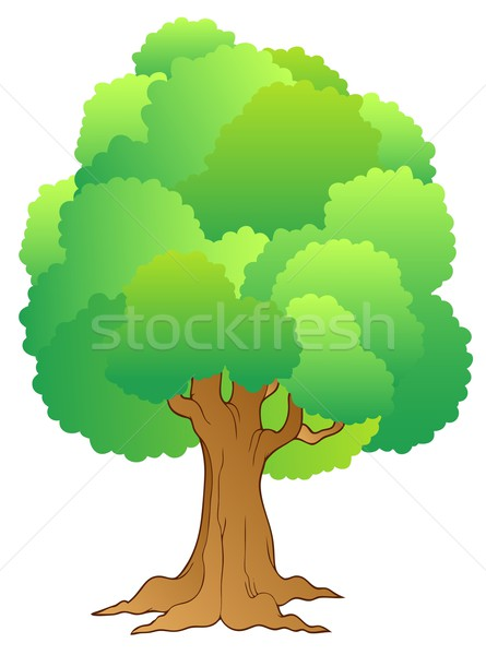 Big tree with green treetop Stock photo © clairev