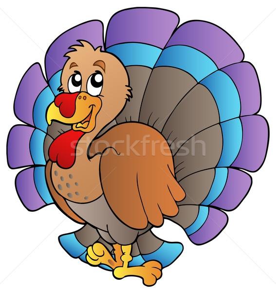 Felice cartoon Turchia natura pollo piuma Foto d'archivio © clairev