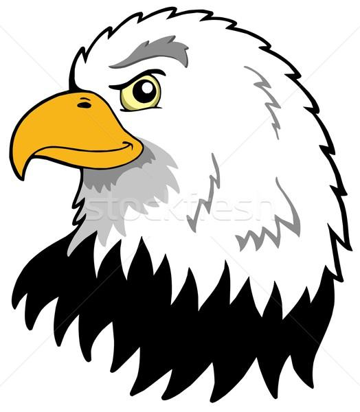 American eagles head Stock photo © clairev