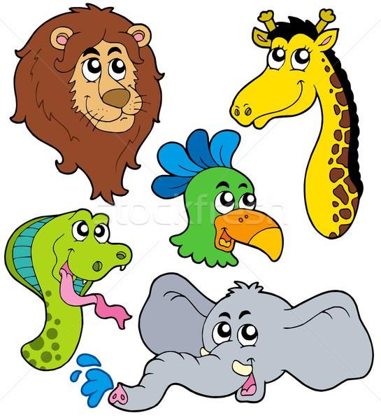 Zoo zwierzęta kolekcja życia lew kolor węża Zdjęcia stock © clairev