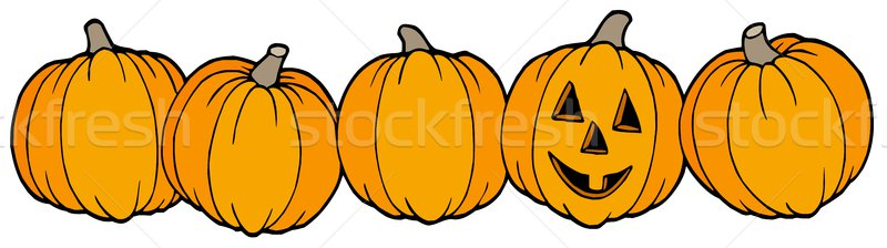 Line of pumpkins Stock photo © clairev