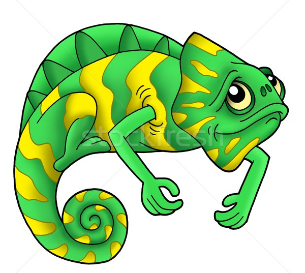 Green chameleon Stock photo © clairev