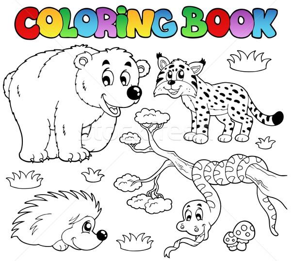 Boyama Kitabi Orman Hayvanlar Gulumseme Kitap Boya