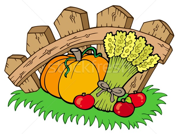Thanksgiving motive with harvest Stock photo © clairev