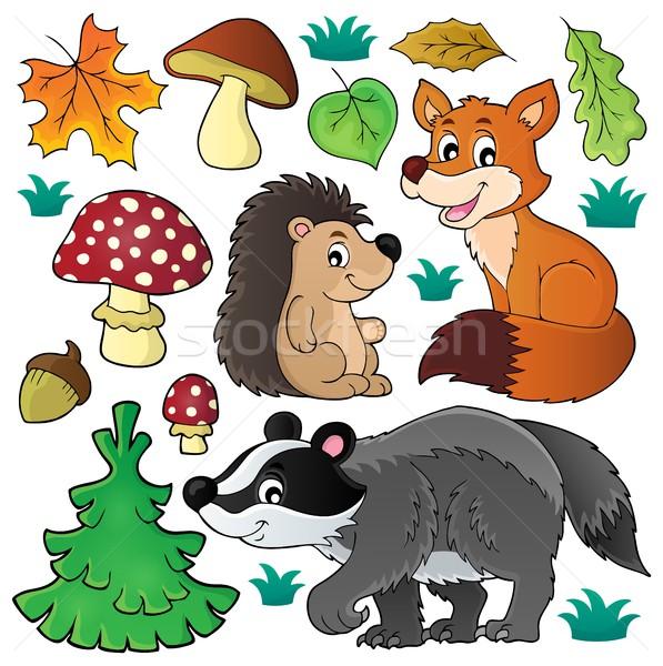 Floresta animais selvagens conjunto madeira folha arte Foto stock © clairev