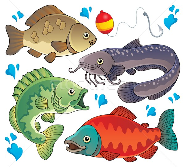 Various freshwater fishes 2 Stock photo © clairev