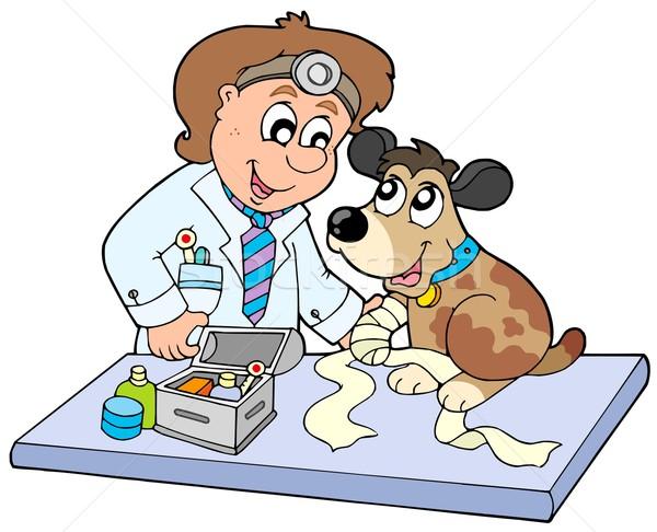 Chien malade patte vétérinaire sourire médecin Photo stock © clairev