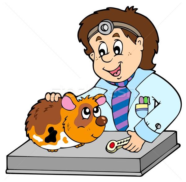 Pequeno roedor veterinário sorrir trabalhar saúde Foto stock © clairev