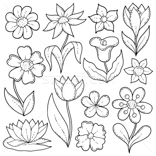 Flower drawings thematic set 1 Stock photo © clairev
