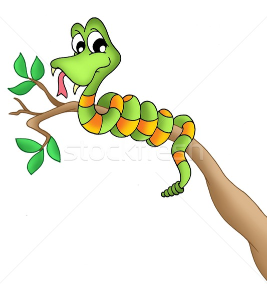 Serpent branche couleur illustration arbre bois Photo stock © clairev